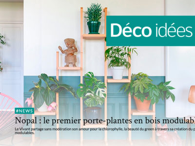 article-decoidees-nopal
