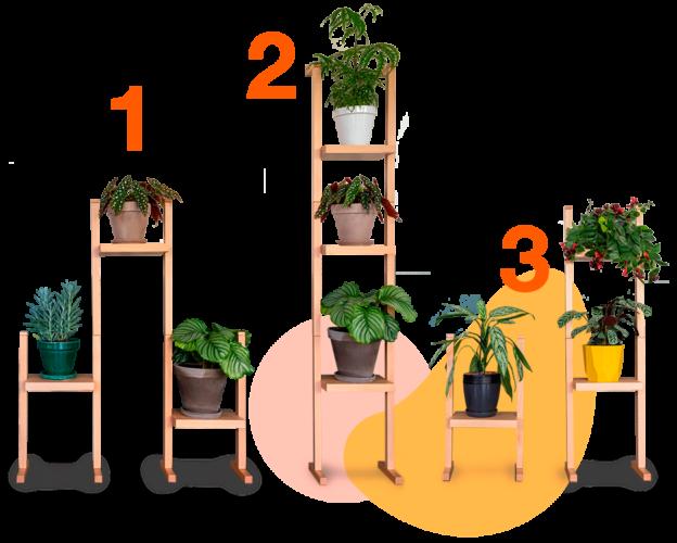 nopal-positions-porte-plantes-le-vivant